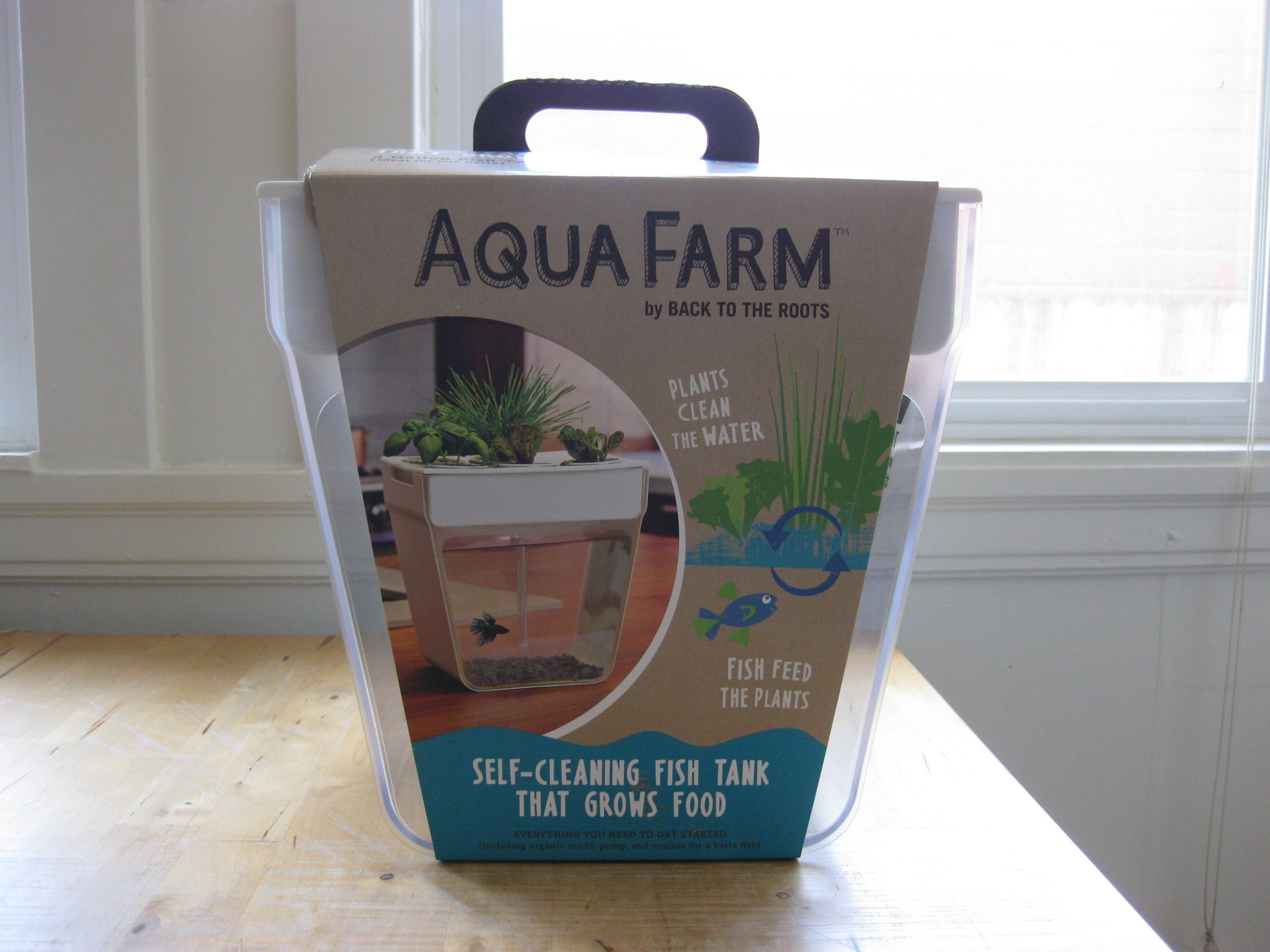 aquaponics with the back to the roots fish tank u2013 gratuitous foodity